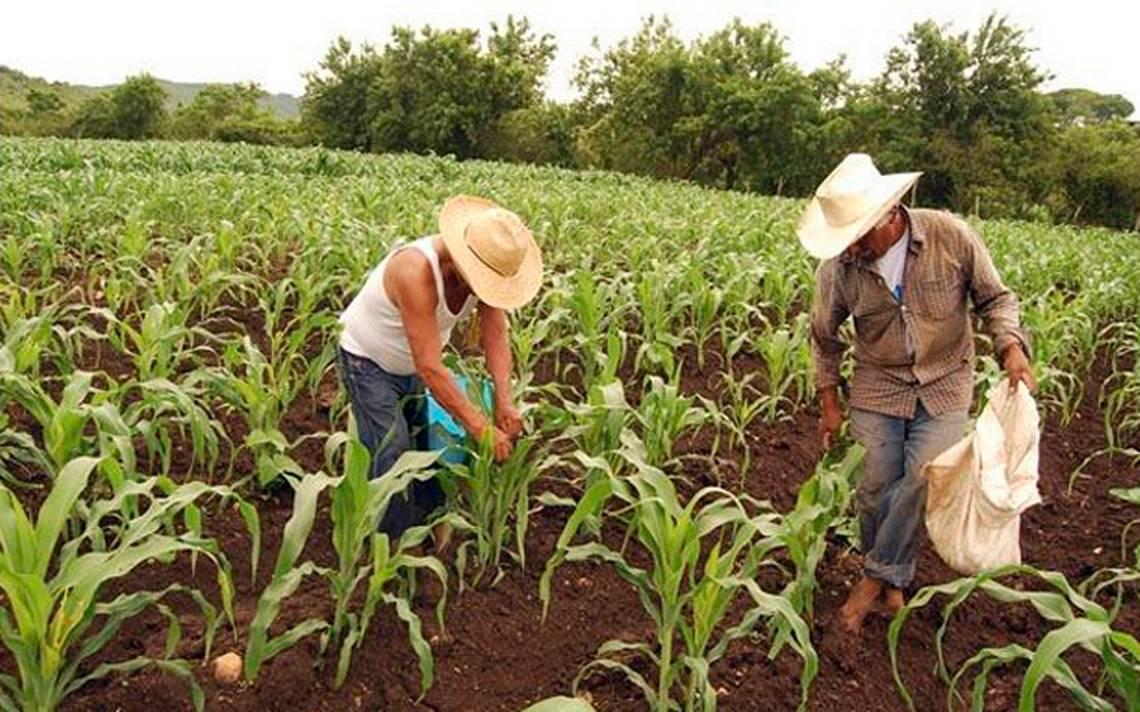 Ejidos en Mexico